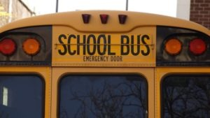 Do School Buses Need Seat Belts?