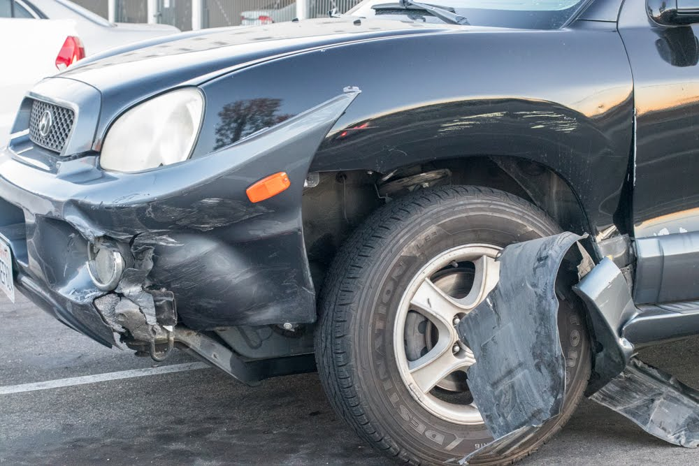 Will My Insurance Cover Collisions With Animals?